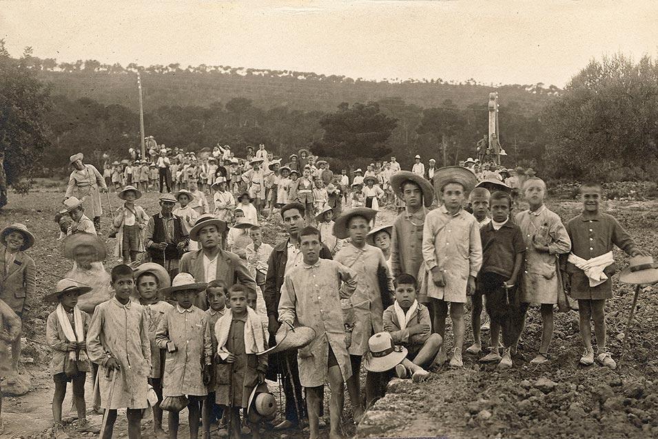 Colonias en el camino de acceso desde la Cartuja al pinar de San Juan.